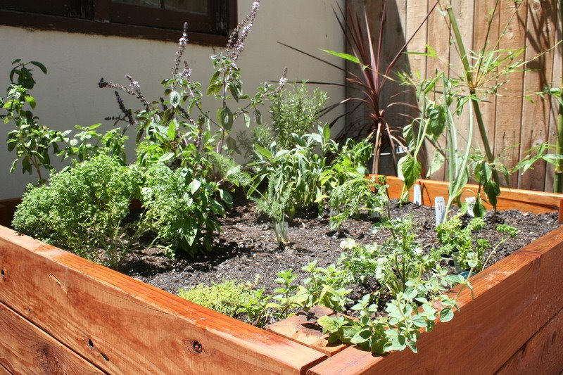 Home Herb Garden Image Search Results